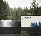 Grunik: Ozvěny (2014, Animal Music)