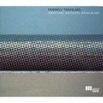 Wolfgang Muthspiel Brian Blade: Friendly Travelers (2006, Materials Records)