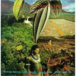 Merl Saunders: Blues From The Rainforest: A Musical Suite (1990, Sumertone)
