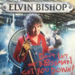 Elvin Bishop: Don't Let the Bossman Get You Down! (1991, Alligator)