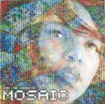 Terri Lyne Carrington: The Mosaic Project (2011, Concord Jazz)