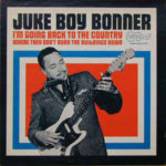 Juke Boy Bonner: I'm Going Back To The Country (Where They Don't Burn The Buildings Down) (1969, Arhoolie Records)